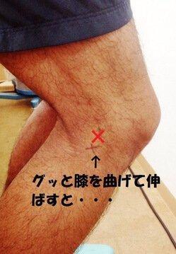 膝屈曲.jpg
